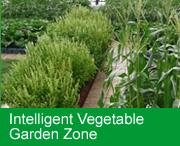 Intelligent Vegetable Garden Zone