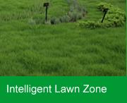 Intelligent Lawn